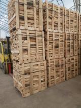 Energie- und Feuerholz - Brennholz Buche kammergetrocknet 20%