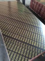 Achat Vente Contreplaqué - Vend Contreplaqué Filmé (Brun) 9, 12, 15, 16, 17, 18, 20, 21 mm Chine