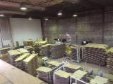 Encuentra los mejores suministros en Fordaq - Venta Madera Dura Europea 12,15,20 mm Holanda