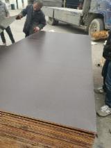 Fordaq wood market - Selling Elliotis Pine Black Film Faced Plywood, 18; 21 mm thick