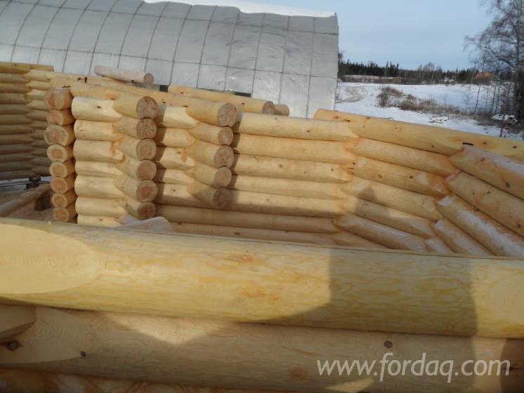 Pine-Canadian-Log