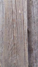 Hobelware Kiefer Pinus Sylvestris - Rotholz - Massivholz, Kiefer  - Rotholz, Innenwand-Verkleidungen