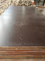 Vend Contreplaqué Filmé (Noir) Eucalyptus 12  mm Chine