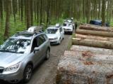 Bosbouw Software - Logboek  'Stack Volume' Meting