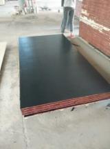 18 mm Black Film Faced Poplar Plywood