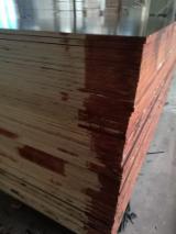 Brown Film Faced Poplar Plywood