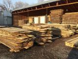 Hardwood  Unedged Timber - Flitches - Boules - Tilia  Loose Romania