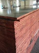 覆膜胶合板(黑膜), 贝壳杉
