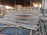 Softwood  Logs For Sale - Pine - Redwood Stakes/Poles, diameter 14-18 cm
