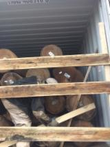 Hickory Hardwood Logs - Red Cedar/Red Oak/Hickory/Gum/Poplar Saw and Veneer Logs, diameter 8 inches