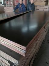 Brown Film Faced Poplar Plywood, 1st Class, 15; 18; 21 mm thick