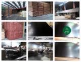Alder / Poplar Film Faced Plywood