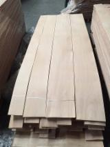 Sliced Veneer For Sale - Beech Natural Veneer, Flat cut - plain, 0.52 mm thick