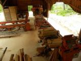 null - Gebraucht Wood Mizer 2013 Trennbandsäge Zu Verkaufen Polen