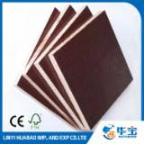 Selling Film Faced Plywood, Poplar Core, 12; 15; 18; 21 mm thick