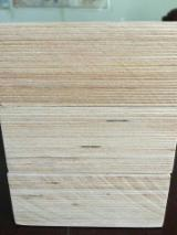 China Supplies - 50mm Birch Plywood for Sculpture, Top Quality!