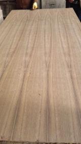 Plywood - AA Grade Q/C Teak Plywood, 2.5-25 mm thick