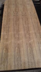 Plywood -  AA Grade C/C Teak/Eucalyptus Plywood