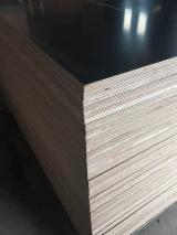 Plywood - F17 grade, 1200 x 2400 x 17 mm Black Film Faced Poplar Plywood