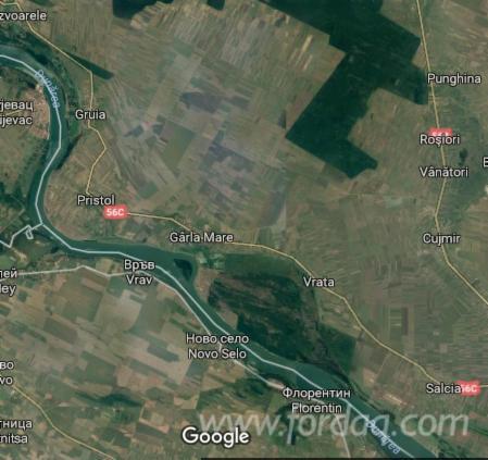 Selling-1705-ha-of-forest--Mehedinti----Romania