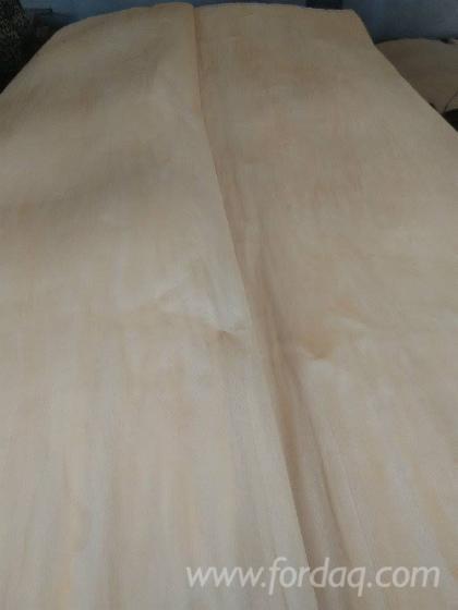 C-Grade-Rotary-Cut-Birch-Veneer