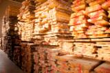 Laubholz  Blockware, Unbesäumtes Holz Zu Verkaufen Lettland - Einseitig Besäumte Bretter, Esche , Birke, Eiche, FSC