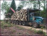 Woodland importers and buyers - Sell 100 Ha of Alder
