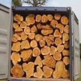 Hardwood Logs importers and buyers - Fresh Cut Oak Logs