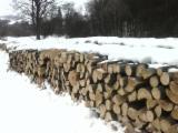 PEFC/FFC Certified Firewood, Pellets And Residues - PEFC/FFC Beech Firewood/Woodlogs Cleaved 10--24;  25--50 cm