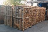 Trouvez tous les produits bois sur Fordaq - Vend Bûches Fendues Hêtre