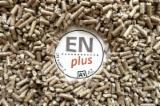 Firewood, Pellets and Residues Supplies - Looking for Spruce - Whitewood Wood pellets, ENplus A1