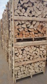 Firewood, Pellets and Residues Supplies - Beech Firewood/Woodlogs Cleaved