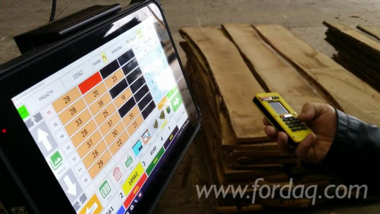 Woodbase---Das-Einfache-System-Zur-Sortierung-Und-Verzeichniss-Des-Unbesaumtenen