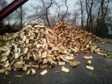 Find best timber supplies on Fordaq - Firewood/Woodlogs Cleaved