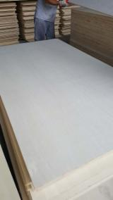 Bleached Poplar Commercial Plywood, FSC, 6-18 mm thick