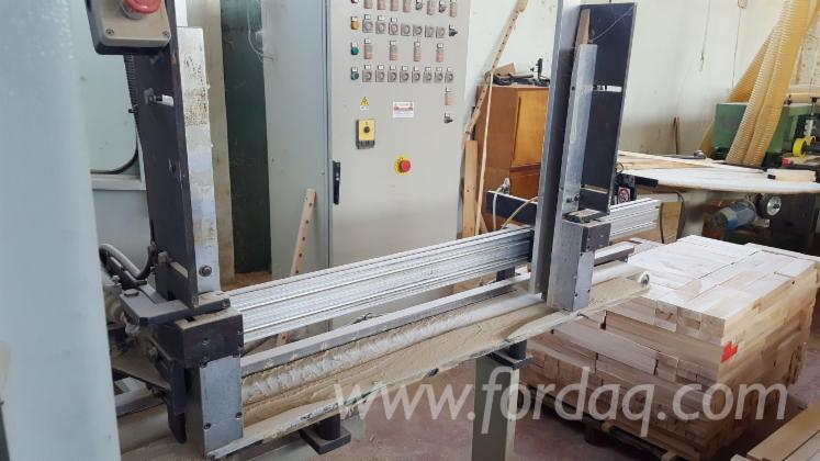Used-2000-Sanding-Line-For-Straight-Pieces-OMEF-mod-