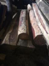 硬木木材 - 注册查看最好的木制品 - 毛边材-木材方垛, 黄檀木