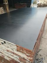 Waterproof Poplar Brown Film Faced Plywood