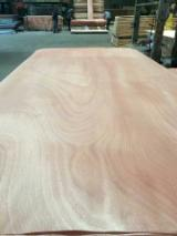 Rotary Cut Veneer - Red Colour Face/Core Veneer For Plywood/MDF/Blockboard Production, 0.2-2 mm thick