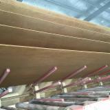 Neu Spanplatten-, Faserplatten-, OSB-Herstellung Zu Verkaufen China