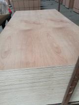 Commerical Plywood Bintangor Face/back E1 Glue