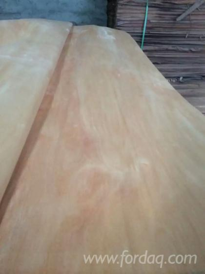 Red-Color-Face-Back-Veneer--Rotary-Cut