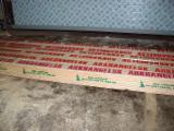 实木, 红松, 云杉-白色木材, 内墙板