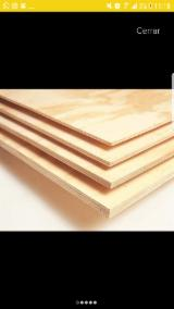 Buy or Sell Natural Plywood - Elliotis Pine  A;  B;  C Natural Plywood