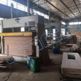 Press For Surface Finishing - GTCO Hotpress machine for door frame