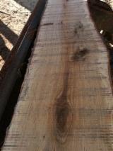 Slovakia Supplies - Loose Oak Timber, 30-55 mm