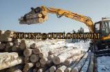 Лісозаготівельна Техніка - Приналежності Грейфер Пили EUC Нове Китай