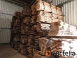 毛边材-圆木剁, 榉木