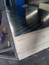 Black Film Faced Poplar core Plywood, 9-25 mm thick