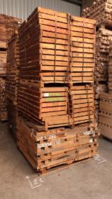 Oak Squares, 60 x 60 mm